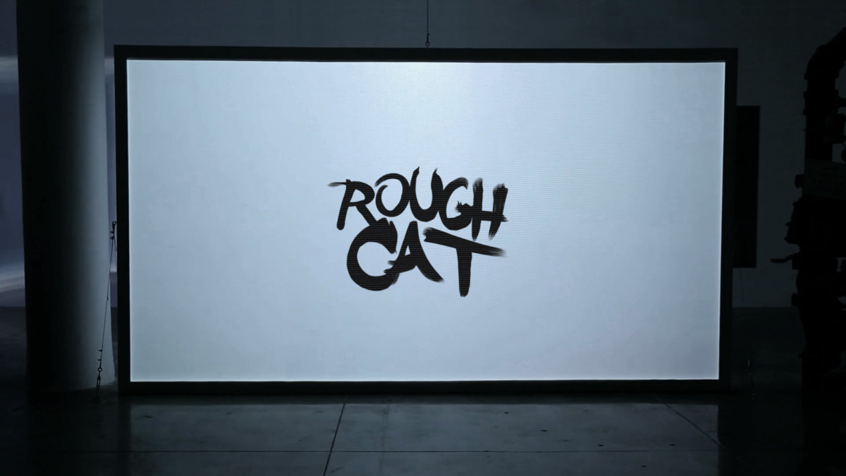 Rough Cat - FAVON.IO
